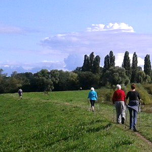 Group exercising Nordic walking york