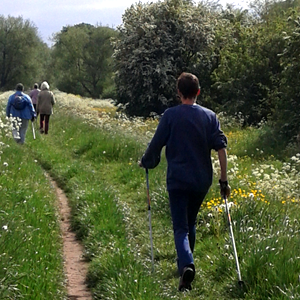 Man Nordic Walking in York Countryside