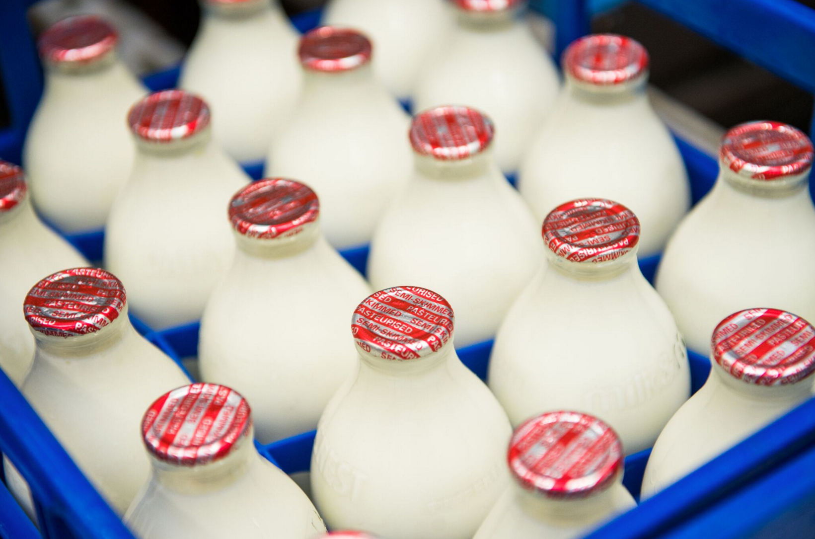 Fresh Cotteswold Dairy Milk