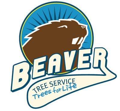 Beaver Tree Service Christchurch