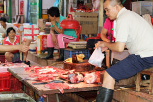 Guangzhou wet markets | Fish | Things to do in Guangzhou